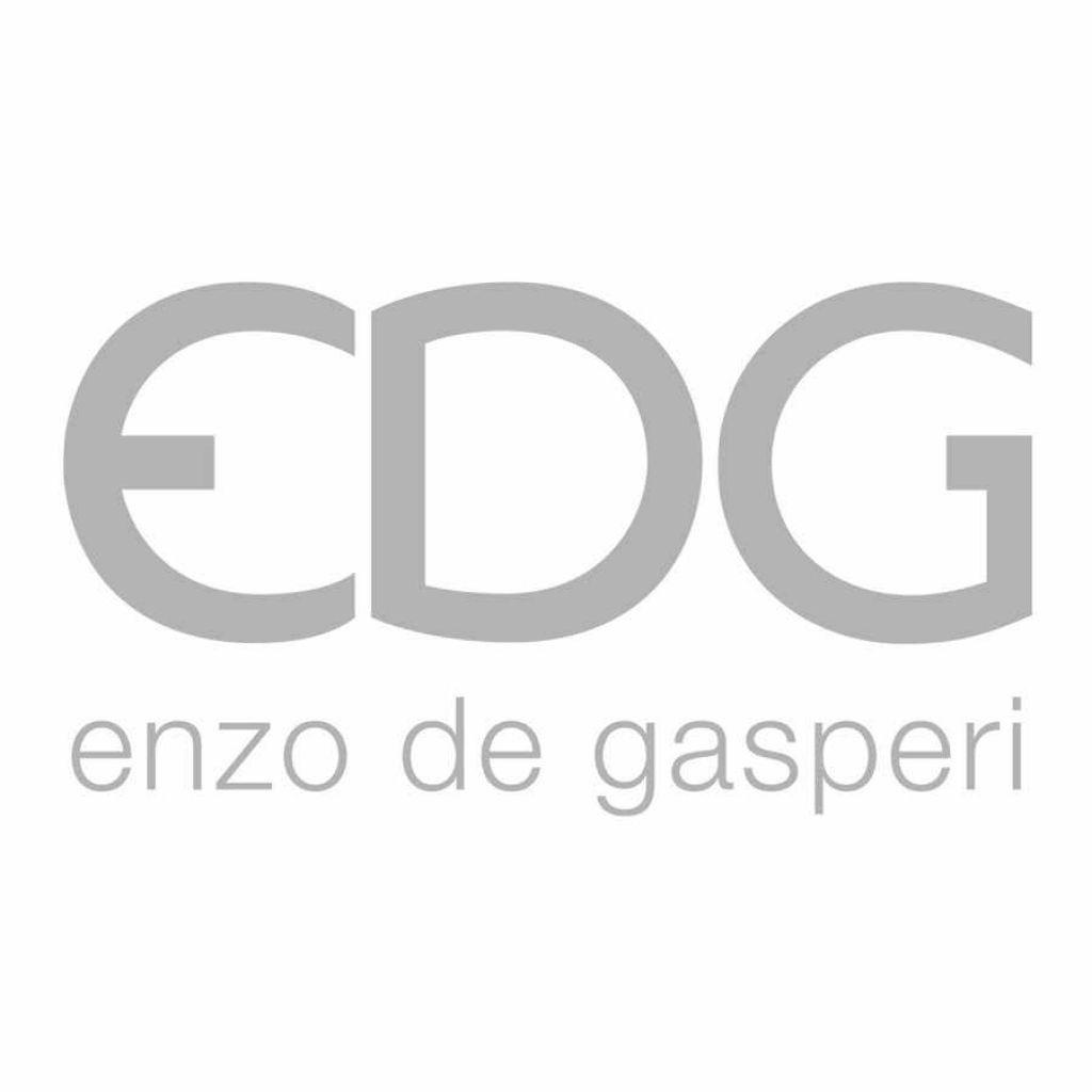 Logo Edg